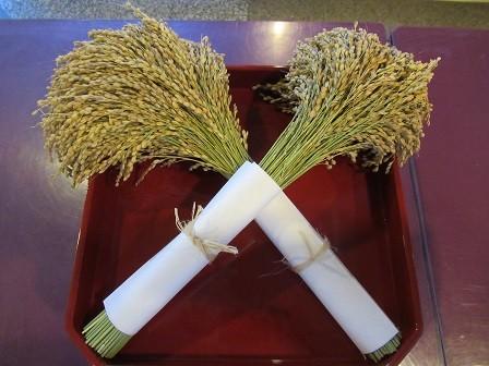 地鎮祭稲穂