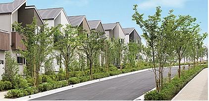 建売住宅緑
