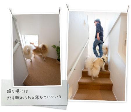 犬と暮らす間取り