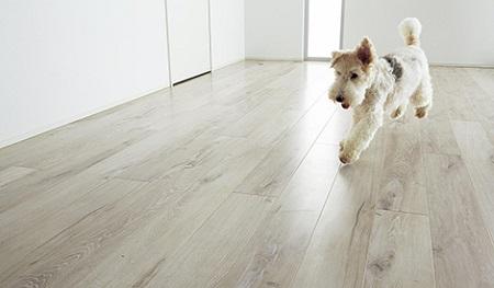 床の色白いフローリング